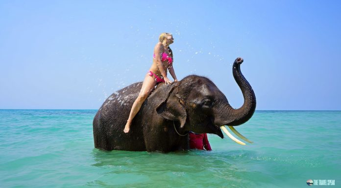 The Travel Speak - Places To Visit In Thailand